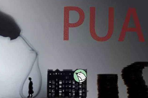 暗访PUA教学:谁在教?谁在学?谁在教唆?
