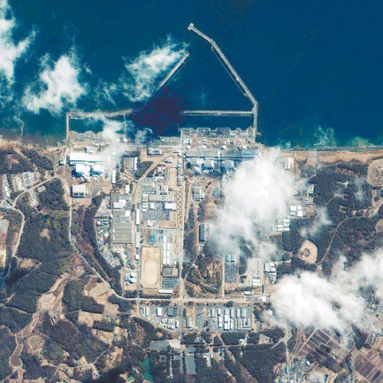 福岛一鱼种被禁,这三大要素能阻止核废水入海?