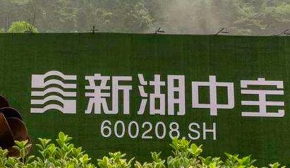 """新湖中宝""""远水解不了近渴"""" 频发债 卖卖卖求""""生机"""""""