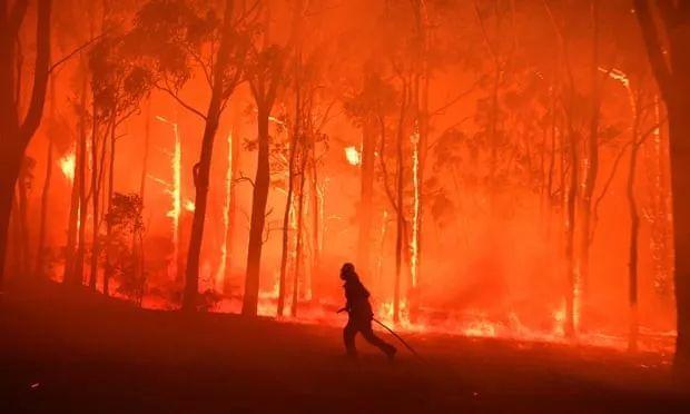 """大火烧了四个月 却还有心思抓""""间谍"""" 澳大利亚还不醒吗?"""