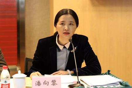 全国人大代表潘向黎:从防疫出发,建议春节放假15天