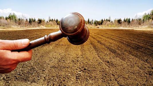 自然资源部:坚决遏制新建耕地住房建设问题