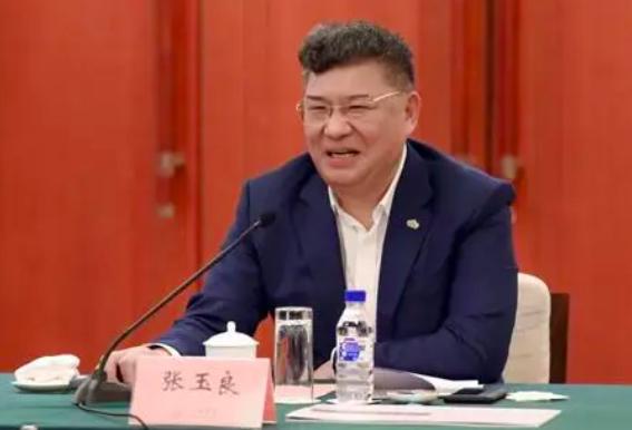 张玉良:绿地金融、贸易港正做股权调整为分拆上市做准备