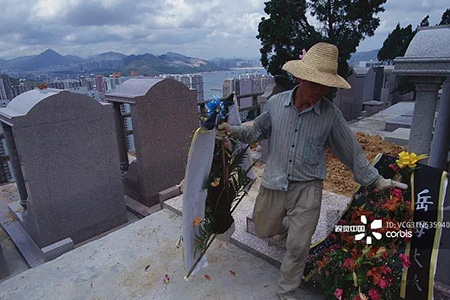 """一块墓地卖10万!江苏一纺织企业被曝""""违建墓园"""""""