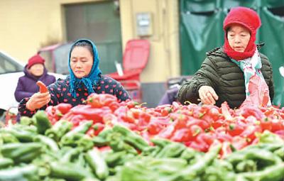 春节市场供应准备就绪 肉类、蔬菜可满足5至7天消费