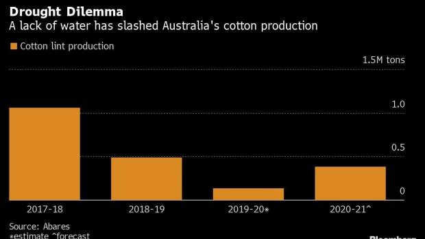 澳洲棉花种植面积锐减83% 降至40年来最低