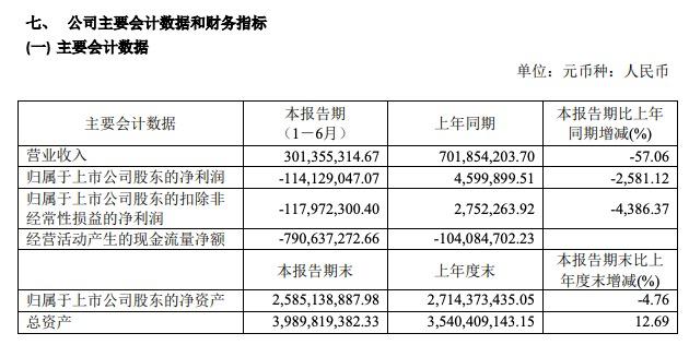 正源股份半年业绩:净利亏损1.14亿同比降2581%