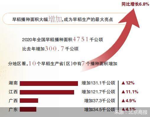 早稻产量增长3.9%扭转七连降 夏粮总产创新高