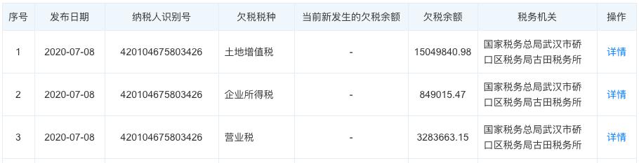 武汉市时代天宇置业涉两项违规售房被扣信用分 公司另涉多笔欠税
