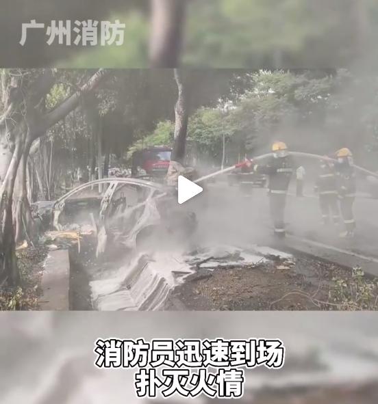 广州一特斯拉Model 3撞树后起火 特斯拉:高速驾驶导致失控