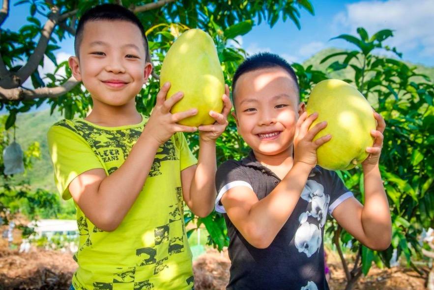 四川攀枝花出台新政:生育二、三孩家庭每月每孩发500元补贴