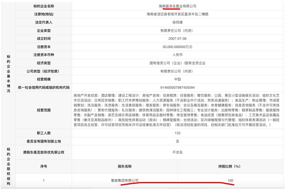 鲁能集团57.31亿元挂牌出售海南两子公司股权及债权